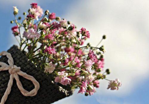 Lebensfreude beginnt mit Achtsamkeit für die kleinen Dinge. Lebensfreude kostet nichts. Lebensfreude ist ein Geschenk, dass wir uns in jedem neuen Moment selbst machen können.
